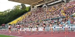 8000-diváků-na-MJO-2018-1